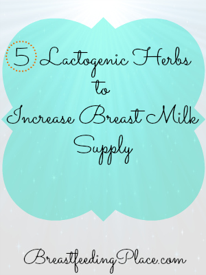 Do Herbs Increase Breast Milk? 5 Lactogenic Herbs and Their Benefits